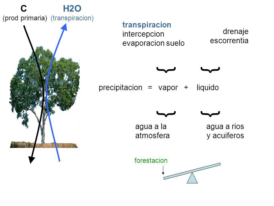{ { C H2O transpiracion intercepcion evaporacion suelo drenaje