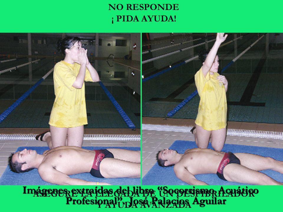 NO RESPONDE ¡ PIDA AYUDA!