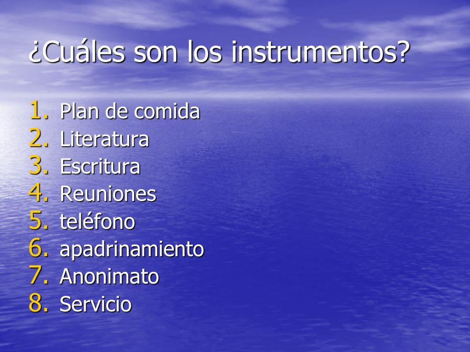 ¿Cuáles son los instrumentos
