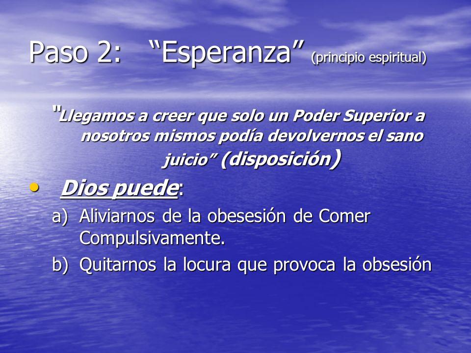 Paso 2: Esperanza (principio espiritual)