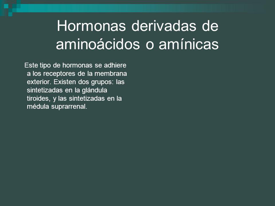 Hormonas derivadas de aminoácidos o amínicas
