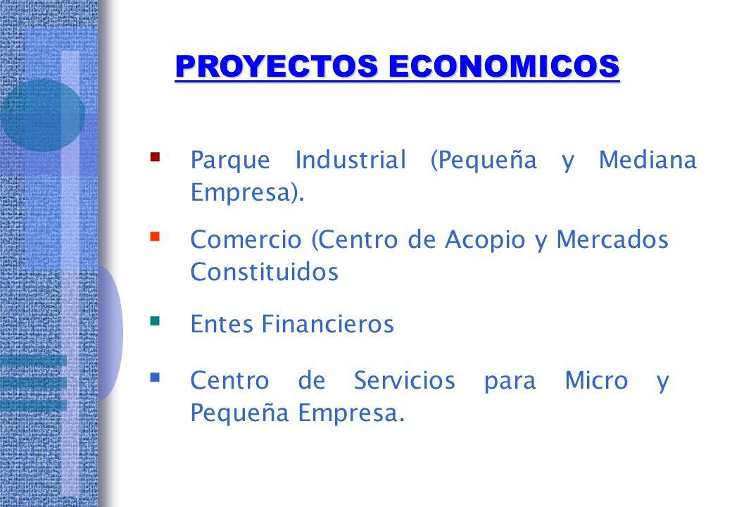 PROYECTOS ECONOMICOS Parque Industrial (Pequeña y Mediana Empresa).