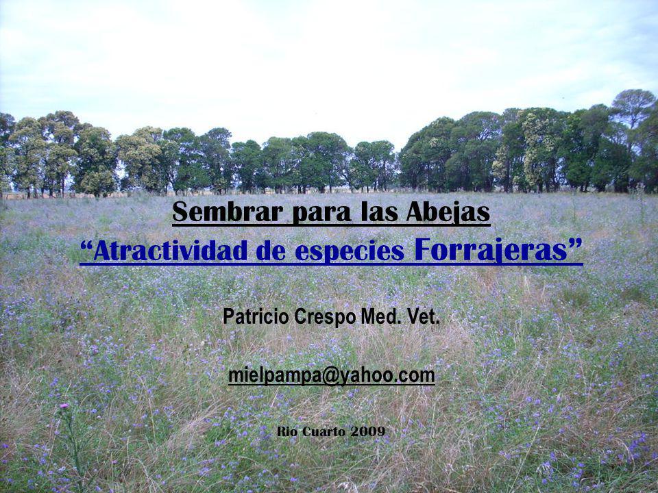 Sembrar para las Abejas Atractividad de especies Forrajeras Patricio Crespo Med. Vet.