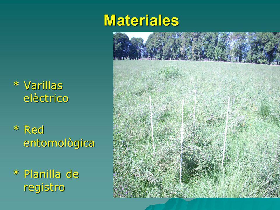 Materiales * Varillas elèctrico * Red entomològica
