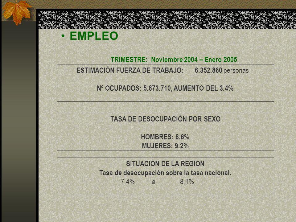 TRIMESTRE: Noviembre 2004 – Enero 2005 TASA DE DESOCUPACIÓN POR SEXO