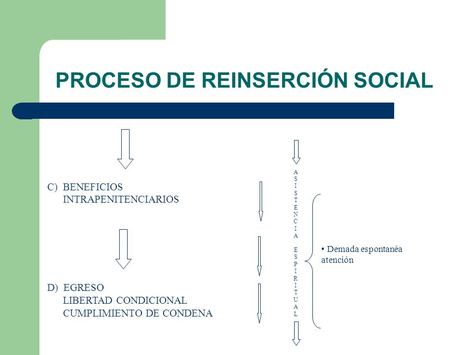 PROCESO DE REINSERCIÓN SOCIAL