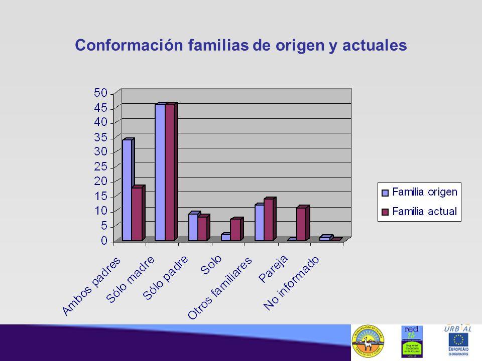 Conformación familias de origen y actuales