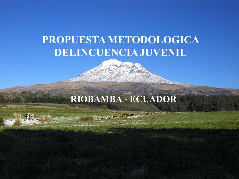 PROPUESTA METODOLOGICA DELINCUENCIA JUVENIL