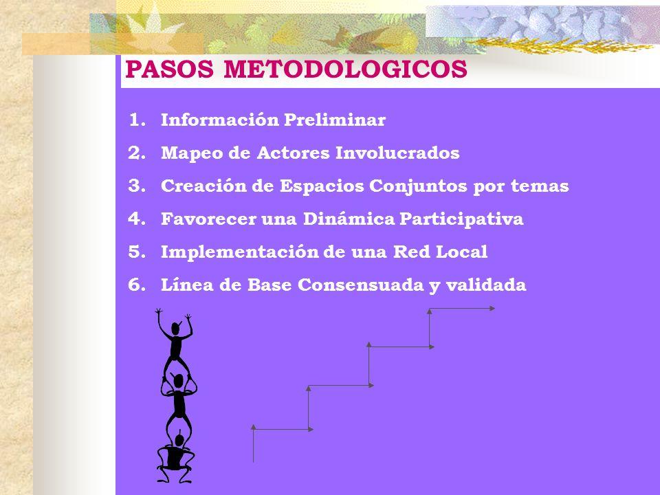 PASOS METODOLOGICOS 1. Información Preliminar