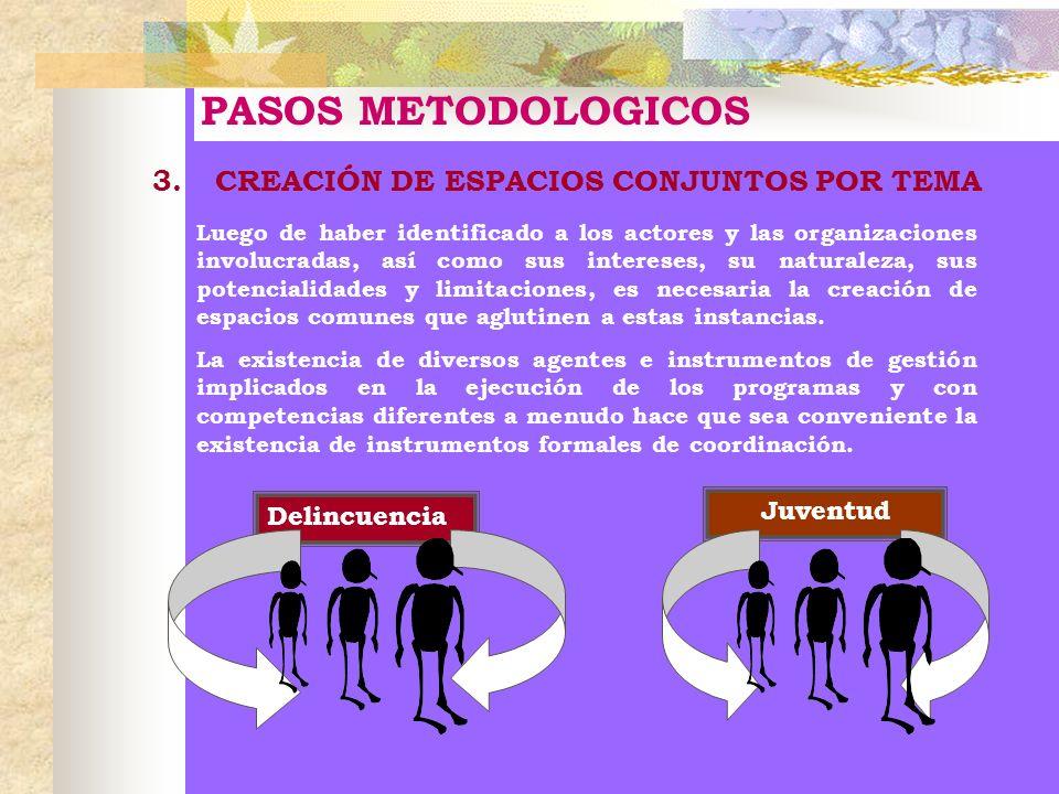PASOS METODOLOGICOS 3. CREACIÓN DE ESPACIOS CONJUNTOS POR TEMA