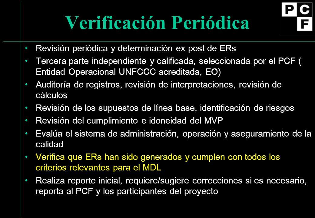 Verificación Periódica