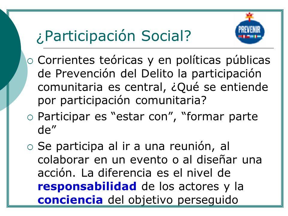 ¿Participación Social