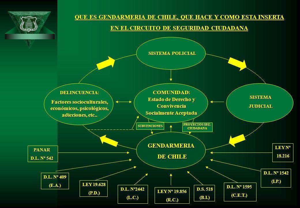 QUE ES GENDARMERIA DE CHILE, QUE HACE Y COMO ESTA INSERTA