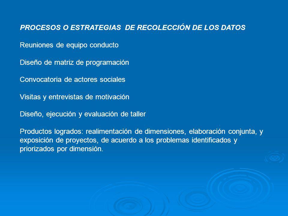 PROCESOS O ESTRATEGIAS DE RECOLECCIÓN DE LOS DATOS