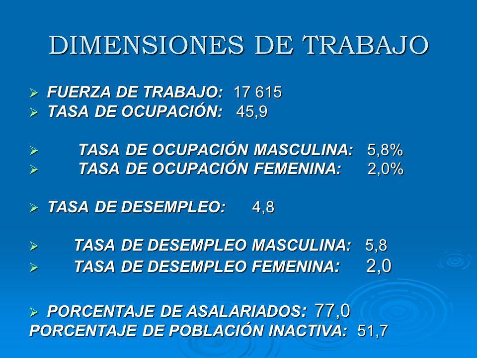 DIMENSIONES DE TRABAJO