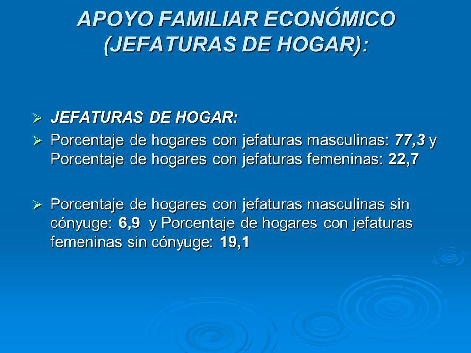 APOYO FAMILIAR ECONÓMICO (JEFATURAS DE HOGAR):