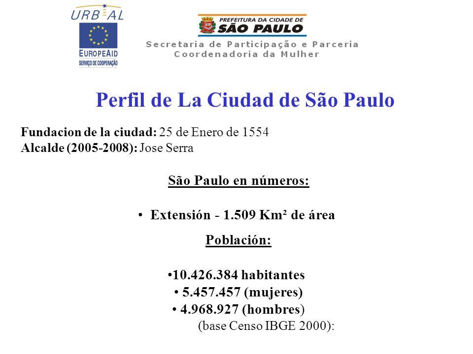 Perfil de La Ciudad de São Paulo