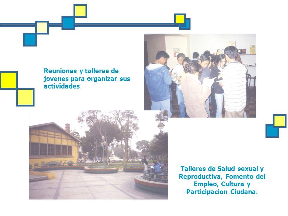 Reuniones y talleres de jovenes para organizar sus actividades