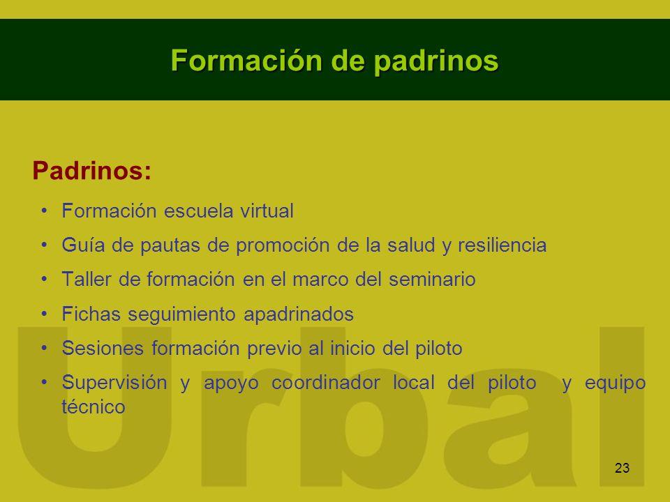 Formación de padrinos Padrinos: Formación escuela virtual