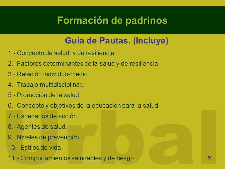 Guía de Pautas. (Incluye)