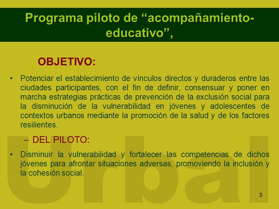 Programa piloto de acompañamiento-educativo ,
