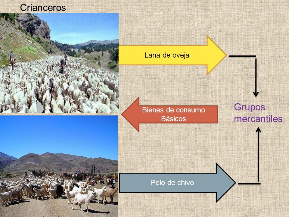 Crianceros Grupos mercantiles Lana de oveja Bienes de consumo Básicos