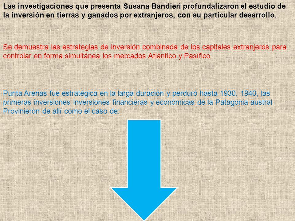 Las investigaciones que presenta Susana Bandieri profundalizaron el estudio de