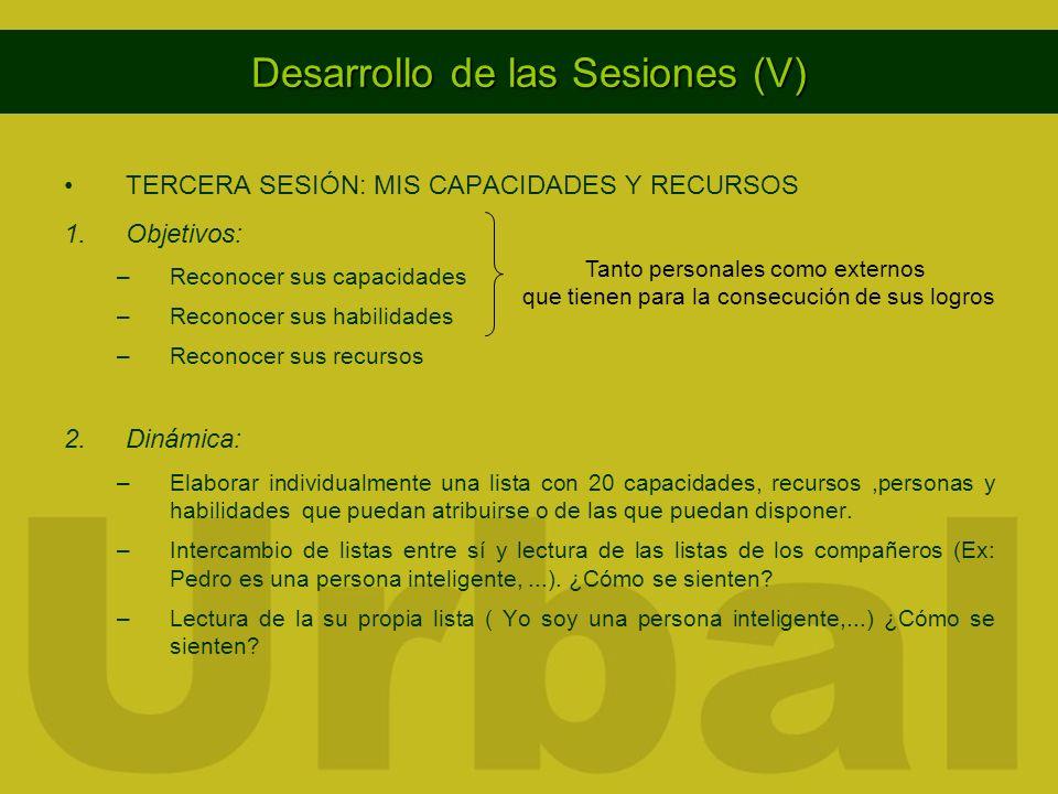 Desarrollo de las Sesiones (V)