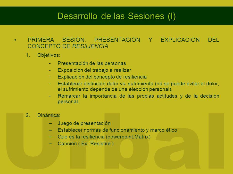 Desarrollo de las Sesiones (I)