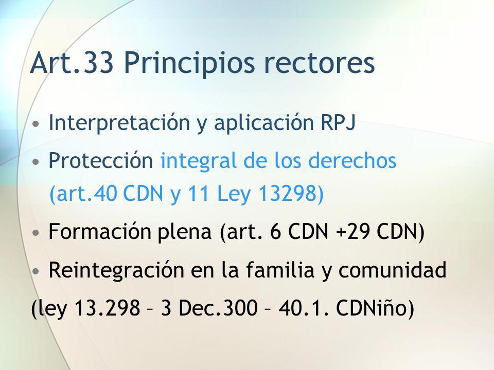 Art.33 Principios rectores