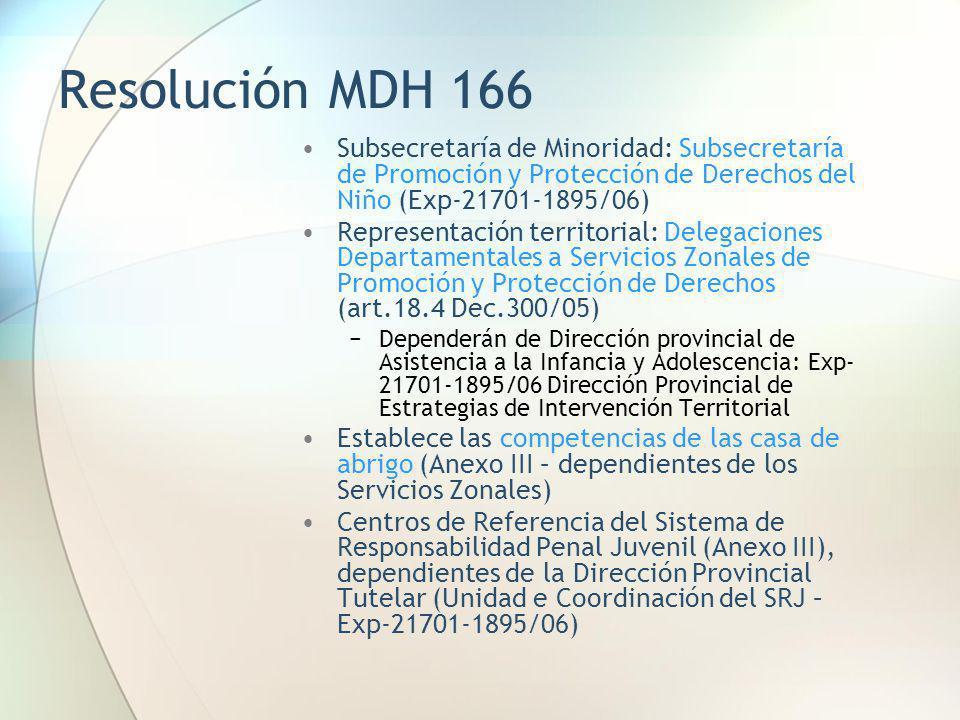 Resolución MDH 166 Subsecretaría de Minoridad: Subsecretaría de Promoción y Protección de Derechos del Niño (Exp-21701-1895/06)