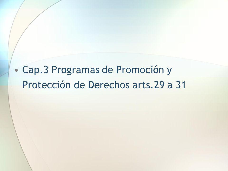 Cap.3 Programas de Promoción y Protección de Derechos arts.29 a 31