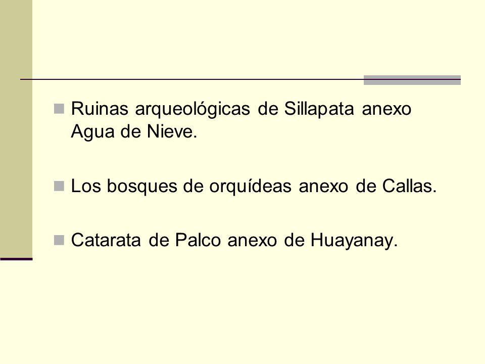 Ruinas arqueológicas de Sillapata anexo Agua de Nieve.