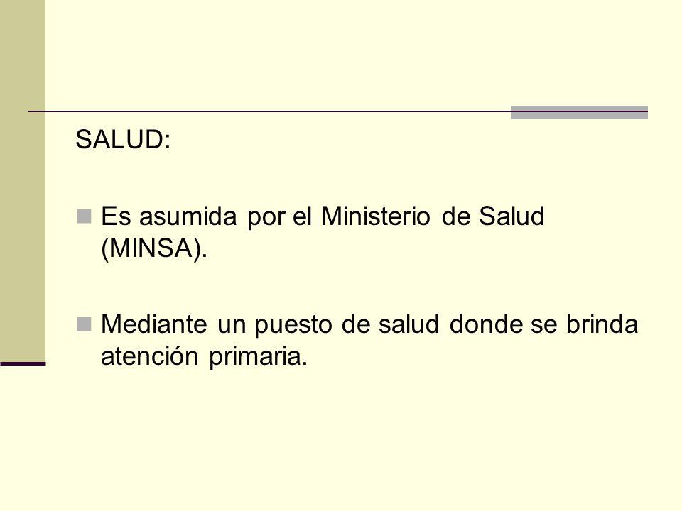 SALUD:Es asumida por el Ministerio de Salud (MINSA).