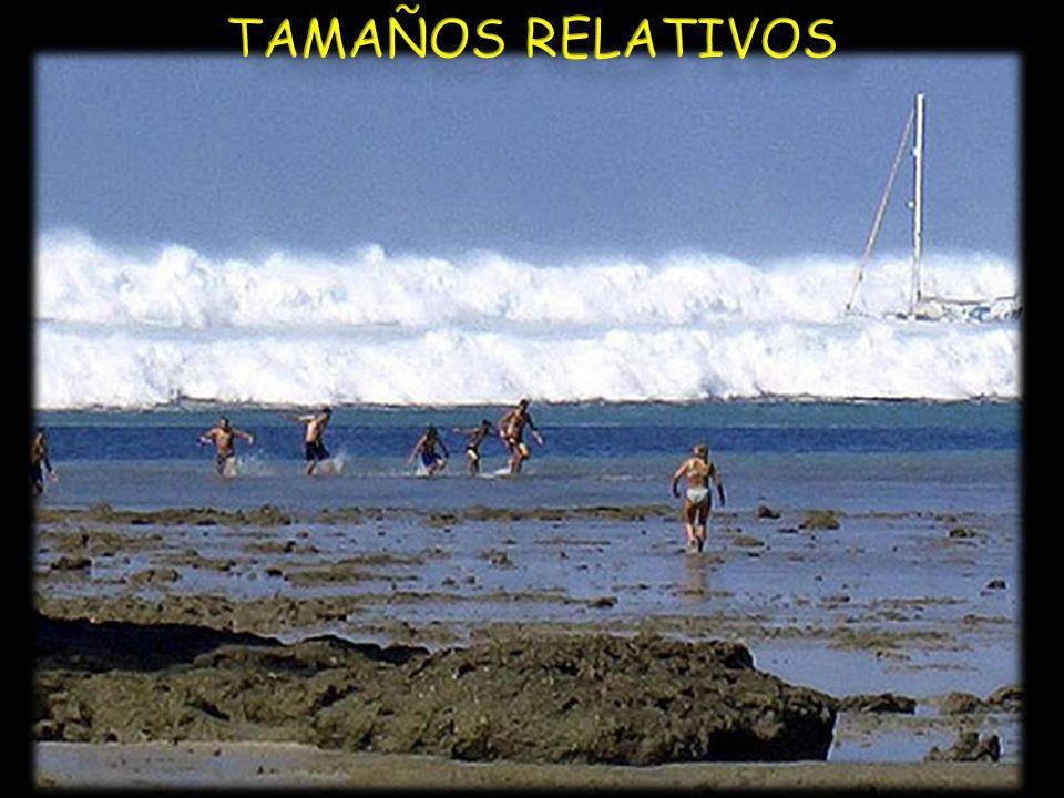 TAMAÑOS RELATIVOS