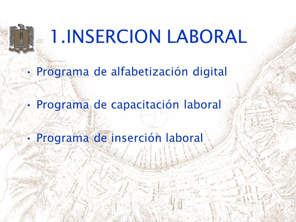 1.INSERCION LABORAL Programa de alfabetización digital