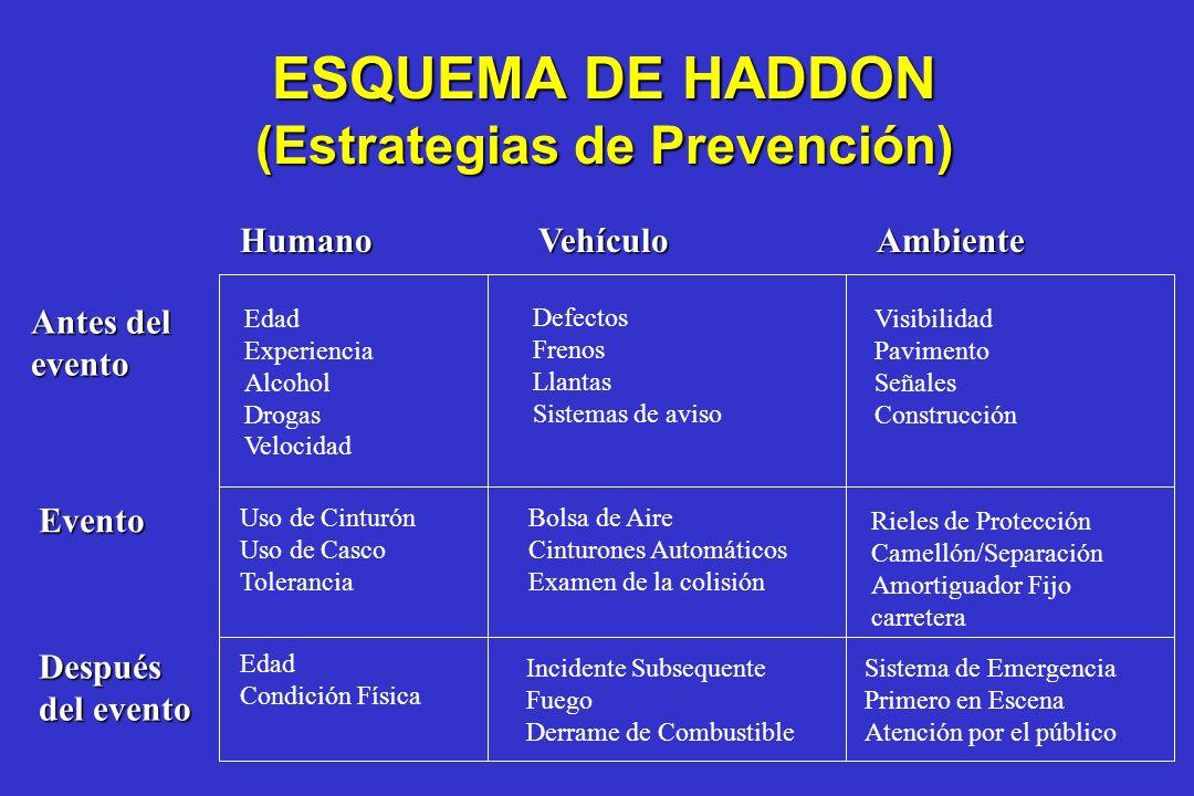 (Estrategias de Prevención)