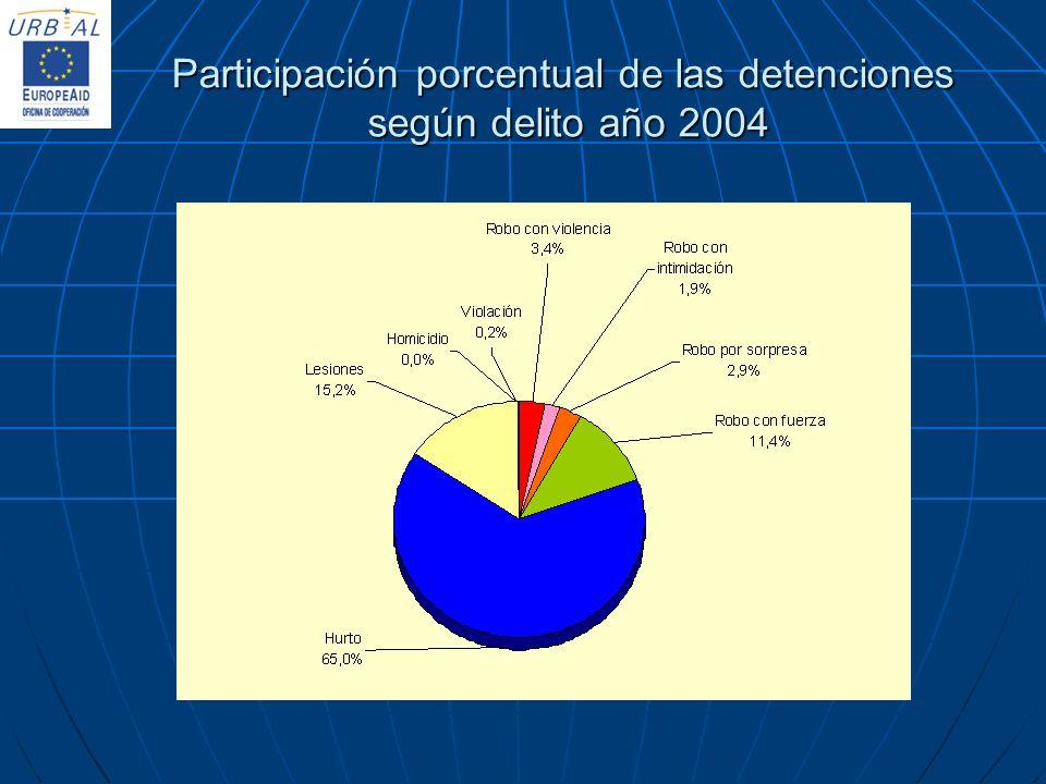 Participación porcentual de las detenciones según delito año 2004