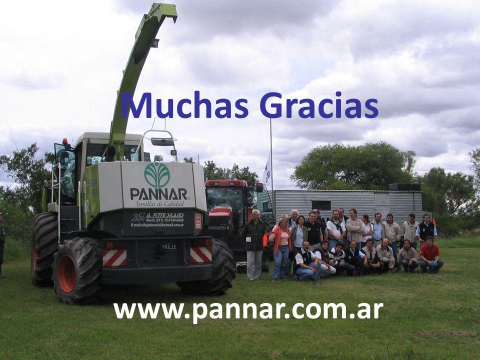 Muchas Gracias www.pannar.com.ar