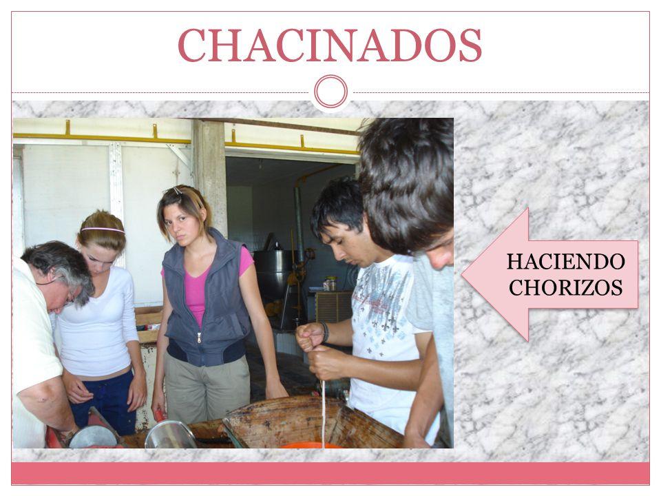 CHACINADOS HACIENDO CHORIZOS