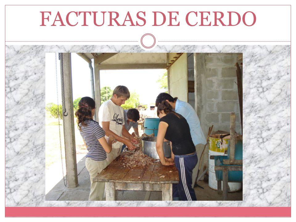 FACTURAS DE CERDO