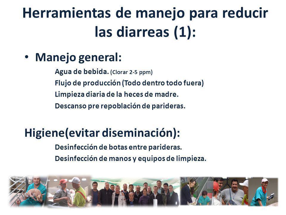 Herramientas de manejo para reducir las diarreas (1):
