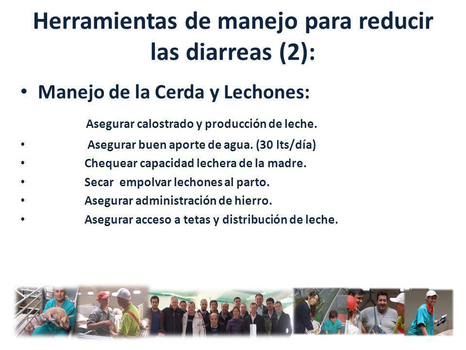 Herramientas de manejo para reducir las diarreas (2):