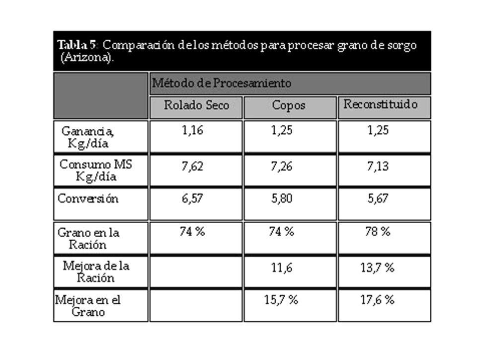 Ing. Agr. Gustavo Clemente