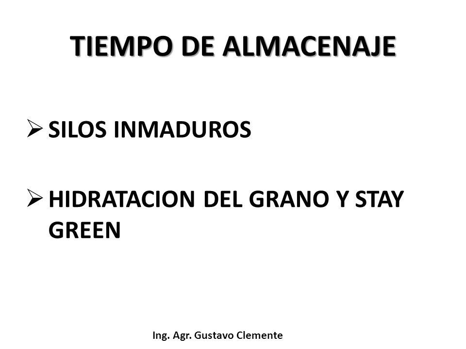 TIEMPO DE ALMACENAJE SILOS INMADUROS