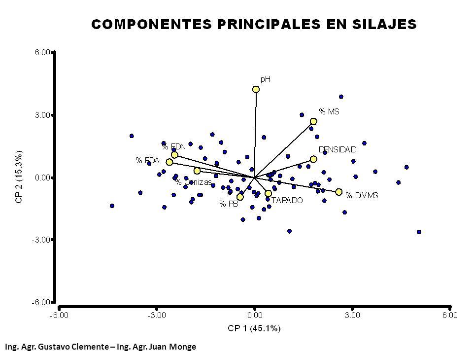 Ing. Agr. Gustavo Clemente – Ing. Agr. Juan Monge