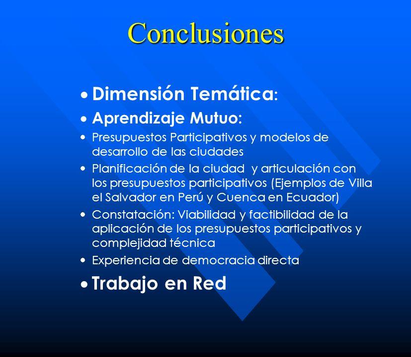 Conclusiones Dimensión Temática: Trabajo en Red Aprendizaje Mutuo: