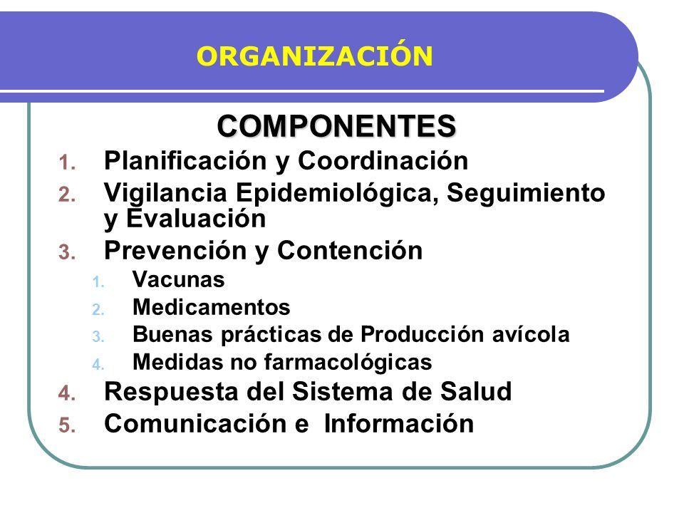 COMPONENTES ORGANIZACIÓN Planificación y Coordinación
