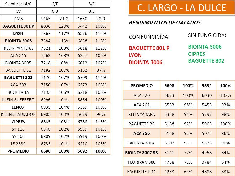 C. LARGO - LA DULCE RENDIMIENTOS DESTACADOS CON FUNGICIDA: