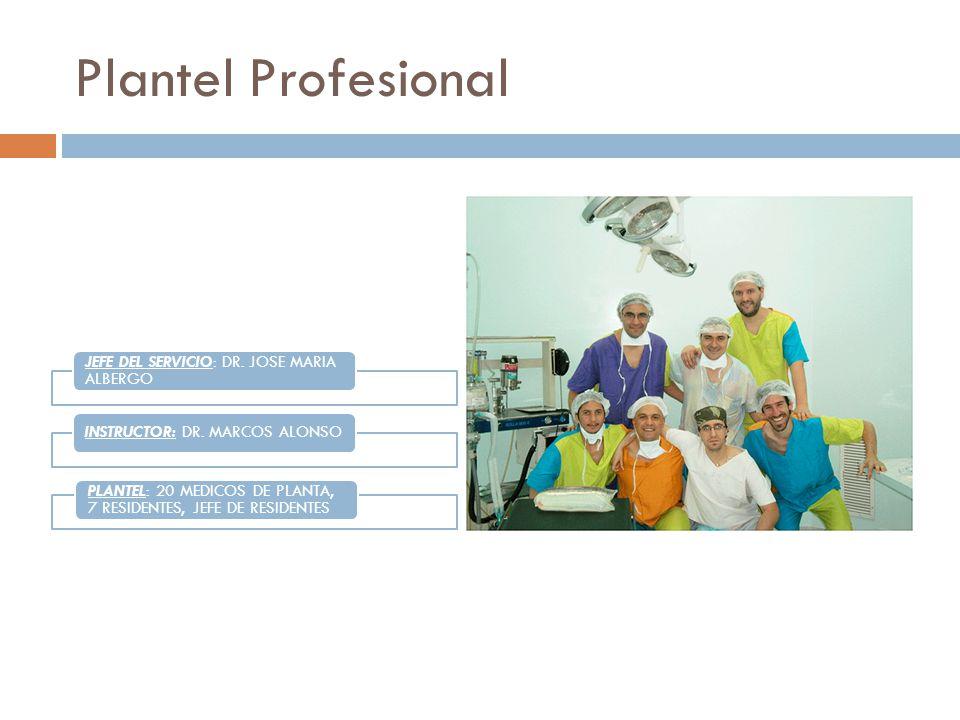 Plantel Profesional JEFE DEL SERVICIO: DR. JOSE MARIA ALBERGO